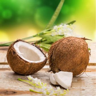 Kokosöl (Cocos Nucifera)